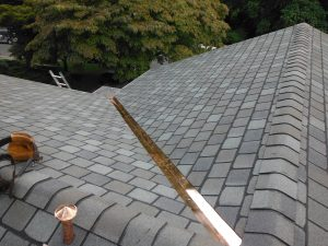 Roof Restoration Ellicott City
